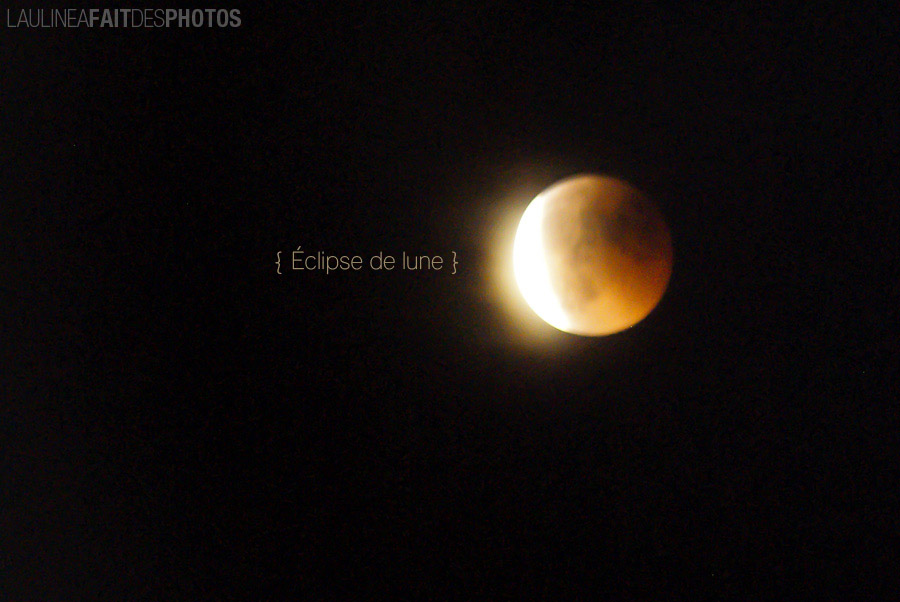 20110615-Lune-008