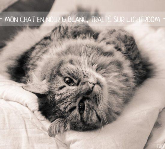 noir et blanc, sepia, retouche photo
