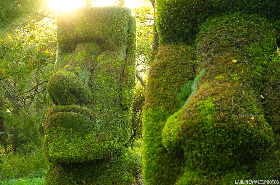 20130926-Jardin_Botanique-201