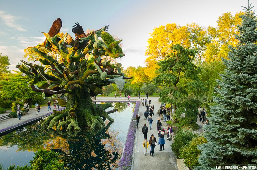 20130926-Jardin_Botanique-359