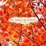 C'était les couleurs de l'automne / été indien… #2