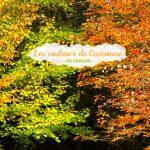 C'était les couleurs de l'automne / été indien… #1