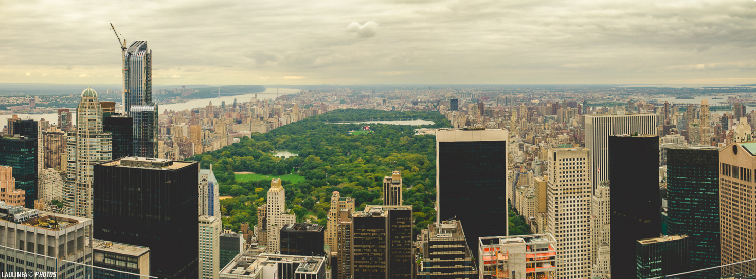 NYC-central_park-panorama