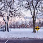 La neige à Montréal