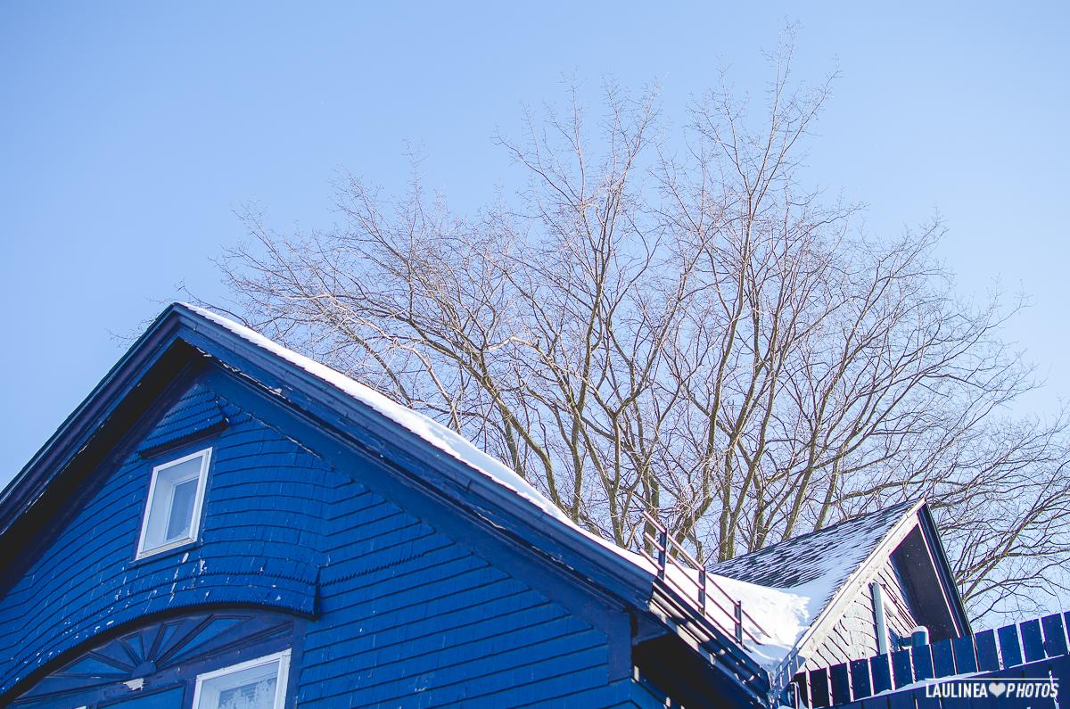 20131216-Tempete_de_neige-021