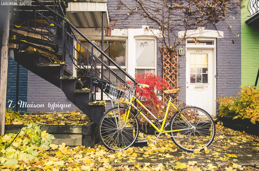 ten on ten - montréal, rue, ruelle, novembre, maison typique, couleur, jaune, bleu, porte, fenêtre, mur