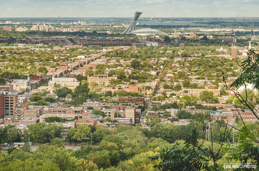 montréal, montreal, canada, parc lafontaine, parc, vert, nature, stade olympique, vue