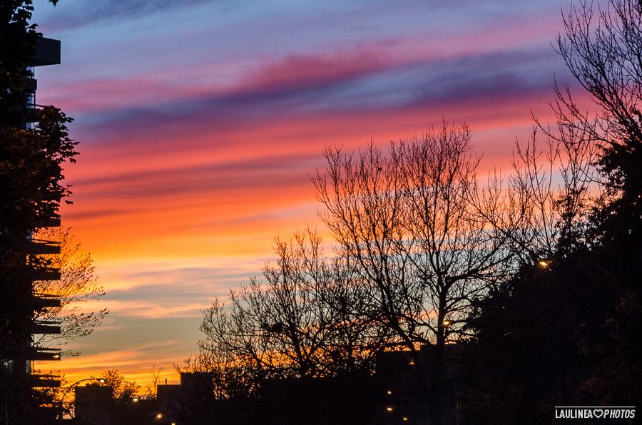 montréal, montreal, canada, coucher de soleil, ciel, couleur