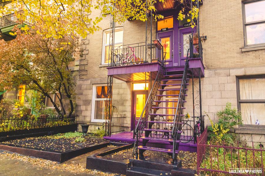 montréal, montreal, canada, appartement, condo, couleur, plateau