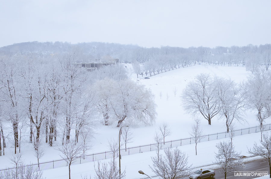 montréal, montreal, canada, hiver, neige