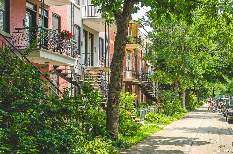 montréal, montreal, canada, appartement, condo, couleur, plateau, ruelle