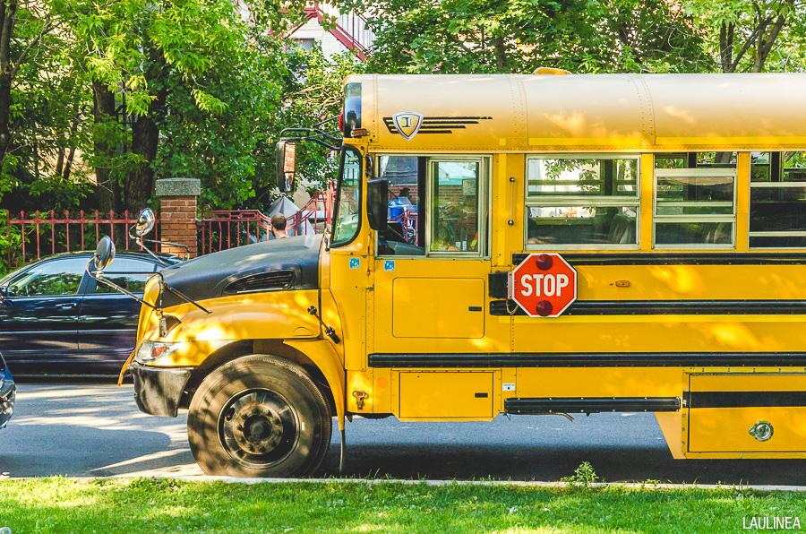 montréal, montreal, canada, bus scolaire, bus jaune, bus enfant