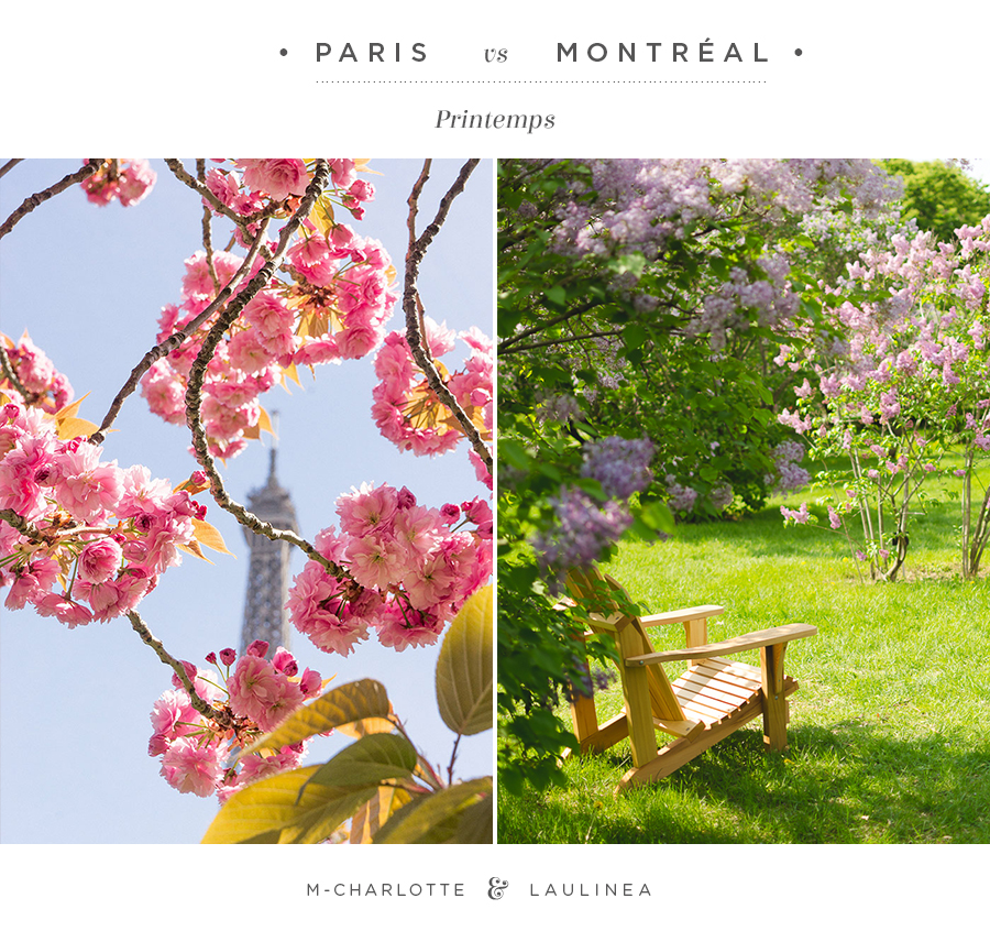 jardin, printemps, fleur, montréal, paris