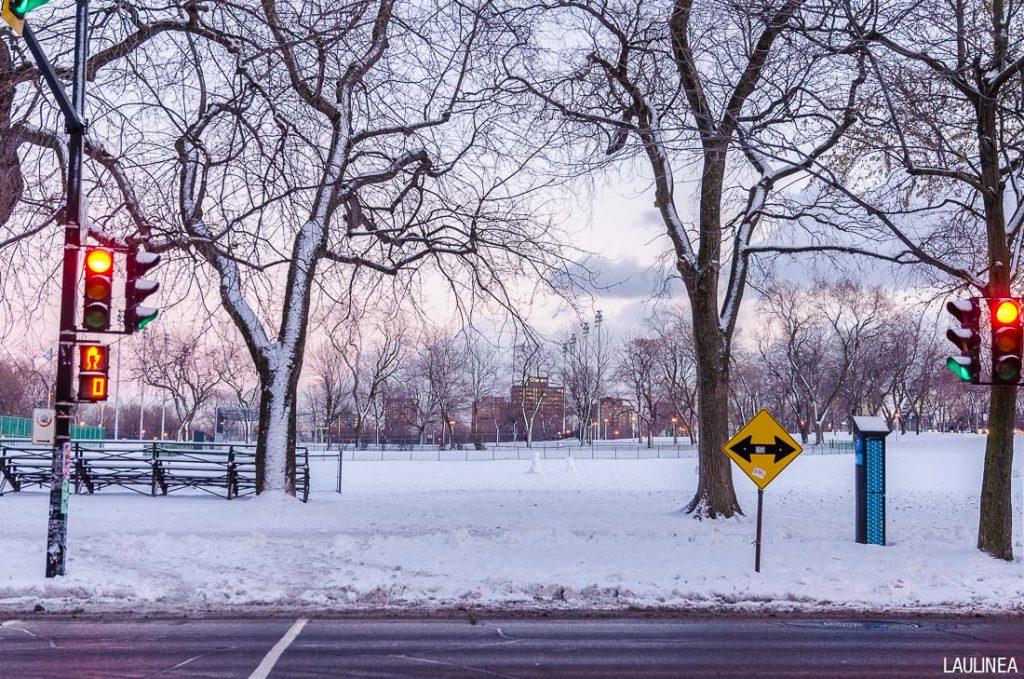 canada, montréal, parc, hiver