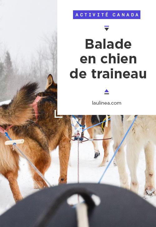 Chiens de traineau (Huskys et Malamutes) : une expérience hivernale authentique du Québec ! #canada #hiver #winter #activité